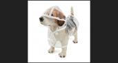 מעיל גשם עמיד למים לגור או לכלב קטן